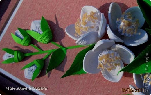 Здравствуйте, уважаемые Мастерицы!!! Сегодня у меня жасмин. Очень люблю это растение - очаровательные цветочки и изумительный запах!!! Куст жасмина растет у меня в палисаднике. фото 5