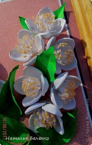 Здравствуйте, уважаемые Мастерицы!!! Сегодня у меня жасмин. Очень люблю это растение - очаровательные цветочки и изумительный запах!!! Куст жасмина растет у меня в палисаднике. фото 4