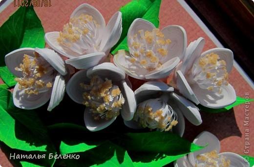 Здравствуйте, уважаемые Мастерицы!!! Сегодня у меня жасмин. Очень люблю это растение - очаровательные цветочки и изумительный запах!!! Куст жасмина растет у меня в палисаднике. фото 6
