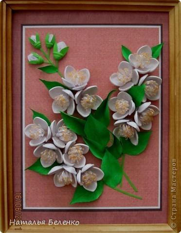 Здравствуйте, уважаемые Мастерицы!!! Сегодня у меня жасмин. Очень люблю это растение - очаровательные цветочки и изумительный запах!!! Куст жасмина растет у меня в палисаднике. фото 9
