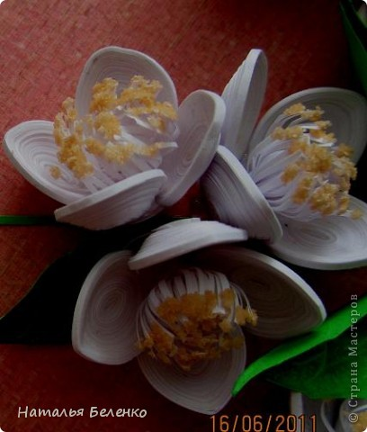 Здравствуйте, уважаемые Мастерицы!!! Сегодня у меня жасмин. Очень люблю это растение - очаровательные цветочки и изумительный запах!!! Куст жасмина растет у меня в палисаднике. фото 7