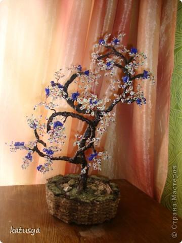 Первое корявое дерево,,но как к первому ребенку отношусь к нему с нежностью.с него всё началось... фото 6