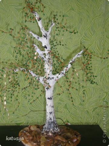 Первое корявое дерево,,но как к первому ребенку отношусь к нему с нежностью.с него всё началось... фото 4