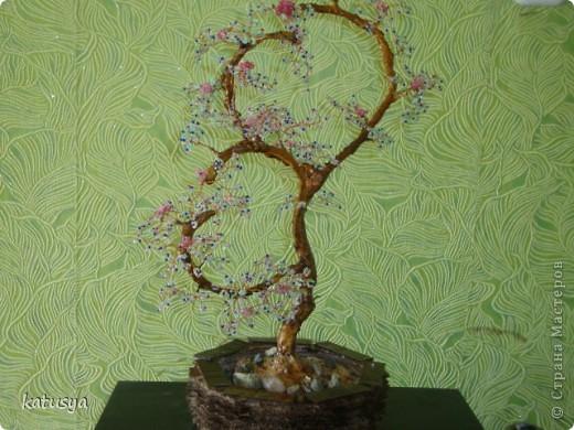 Первое корявое дерево,,но как к первому ребенку отношусь к нему с нежностью.с него всё началось... фото 5