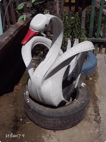 Лебедь..