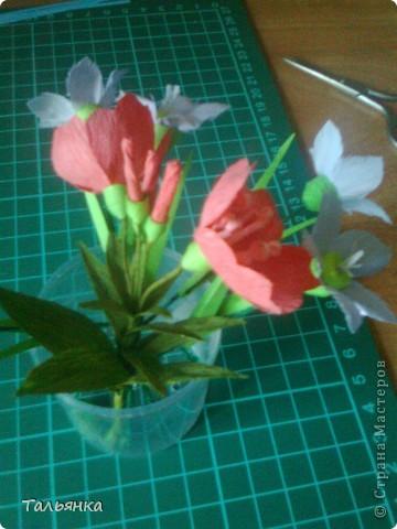 """Эти цветы - часть моей будущей композиции, скоро выложу, а пока... Оцените, пожалуйста. Дорогие мастерицы, может кто-то знает название этих цветов (а может непохоже?), делала, так сказать, с """"натуры"""". фото 2"""