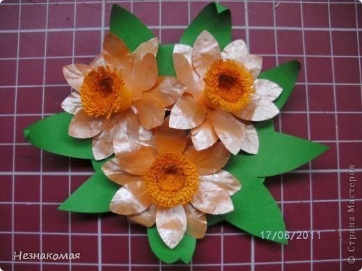 У Ирины Sahalin http://stranamasterov.ru/node/204927 увидела магнитики и все - загорелась. И вот что у меня за два не полных вечера получилось с использованием всего одного дырокола.  фото 2