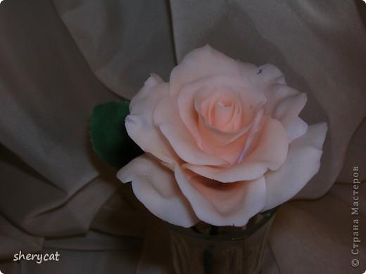 понравилось мне делать розы. То ли масса хороша, то ли настроение такое фото 2