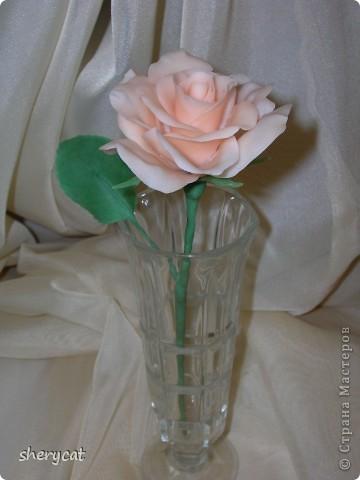 понравилось мне делать розы. То ли масса хороша, то ли настроение такое фото 1