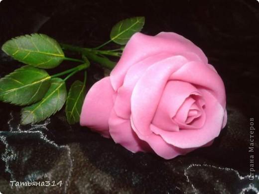 Продолжаю делать королеву цветов! фото 5