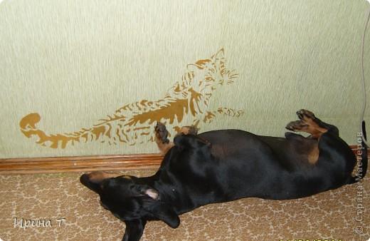 Кошка нарисована акриловой золотой краской на стене через трафарет-обои однотонные были скучноваты... фото 3