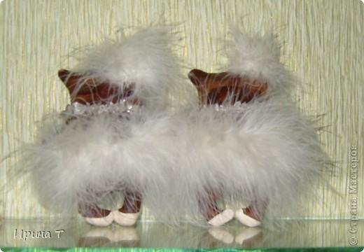 Девушки очень долго репетировали лебединое озеро -посмотрим что получилось! фото 4