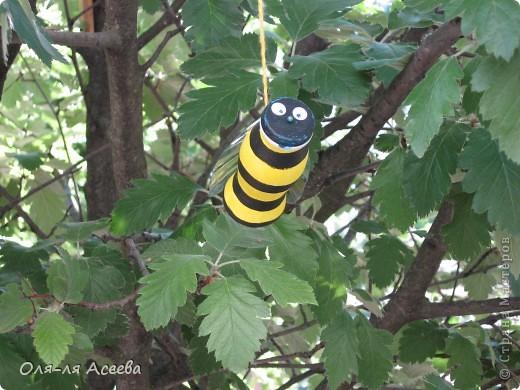 "Пчелка из бутылочки ""Имунелли"" фото 1"