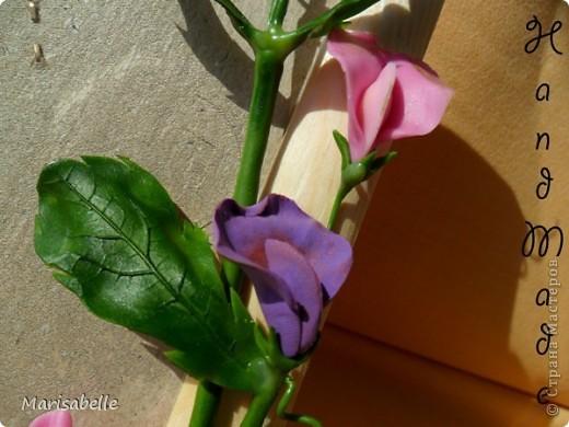 Приветствую всех! Представляю Вам еще одну рамочку, оформленную цветами из холодного фарфора.  фото 3
