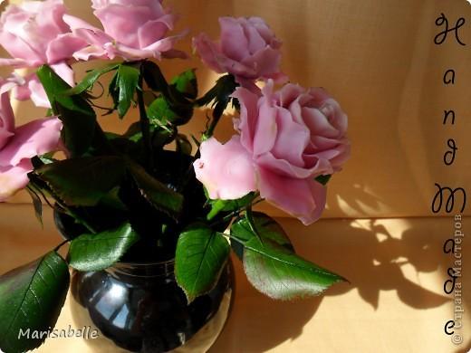 Еще раз здравствуйте за сегодняшний день! Наконец-то они готовы - мои долгожданные свои собственные розовые розы! Я просто очень их хотела, мечтала о них и очень-очень старалась. Когда вчера я их закончила - на глазах появились слезы счастья.   фото 8