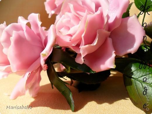 Еще раз здравствуйте за сегодняшний день! Наконец-то они готовы - мои долгожданные свои собственные розовые розы! Я просто очень их хотела, мечтала о них и очень-очень старалась. Когда вчера я их закончила - на глазах появились слезы счастья.   фото 4