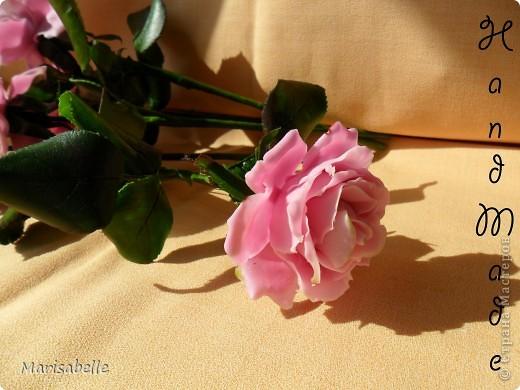 Еще раз здравствуйте за сегодняшний день! Наконец-то они готовы - мои долгожданные свои собственные розовые розы! Я просто очень их хотела, мечтала о них и очень-очень старалась. Когда вчера я их закончила - на глазах появились слезы счастья.   фото 5