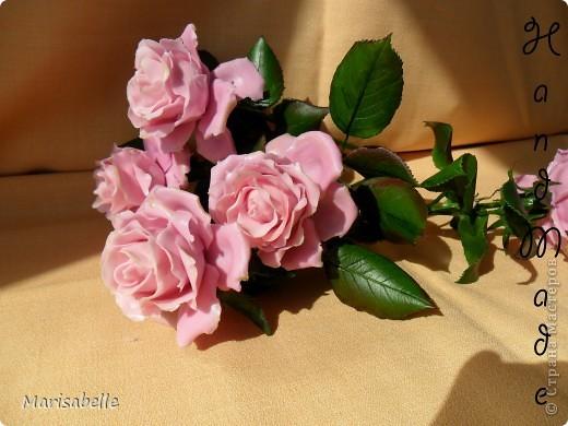 Еще раз здравствуйте за сегодняшний день! Наконец-то они готовы - мои долгожданные свои собственные розовые розы! Я просто очень их хотела, мечтала о них и очень-очень старалась. Когда вчера я их закончила - на глазах появились слезы счастья.   фото 9