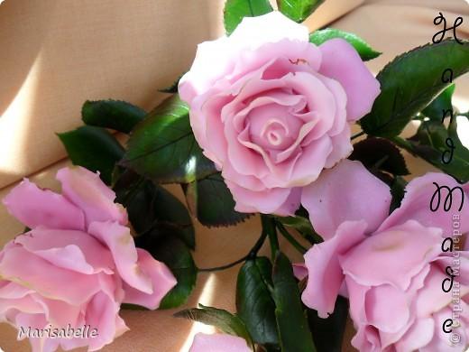 Еще раз здравствуйте за сегодняшний день! Наконец-то они готовы - мои долгожданные свои собственные розовые розы! Я просто очень их хотела, мечтала о них и очень-очень старалась. Когда вчера я их закончила - на глазах появились слезы счастья.   фото 3