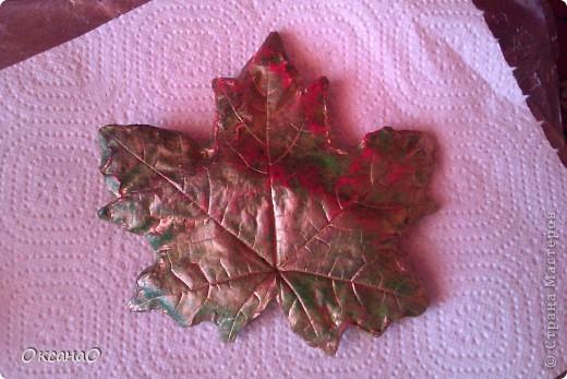 Кленовый листок фото 1
