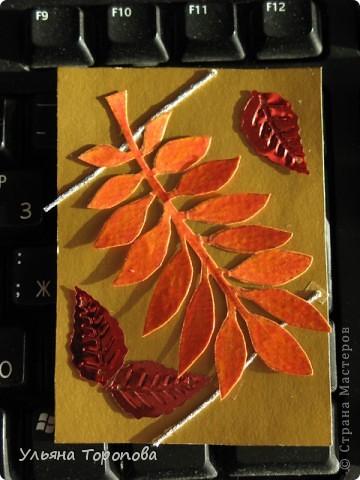 Осень - мое любимое время года, особенно ранняя, когда еще нет проливных дождей и много-много шуршащих листочков!))) bagira1965 и Valkiria выбирайте пожалуйста первые!!! А теперь давайте отгадывать листочки... фото 2