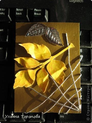 Осень - мое любимое время года, особенно ранняя, когда еще нет проливных дождей и много-много шуршащих листочков!))) bagira1965 и Valkiria выбирайте пожалуйста первые!!! А теперь давайте отгадывать листочки... фото 3
