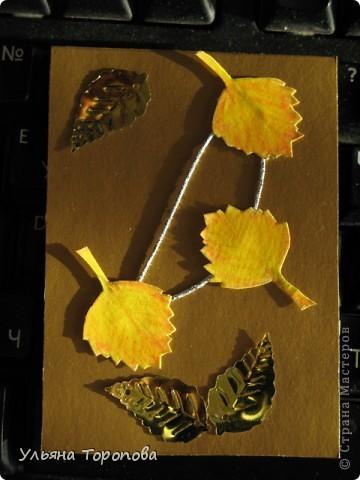 Осень - мое любимое время года, особенно ранняя, когда еще нет проливных дождей и много-много шуршащих листочков!))) bagira1965 и Valkiria выбирайте пожалуйста первые!!! А теперь давайте отгадывать листочки... фото 5