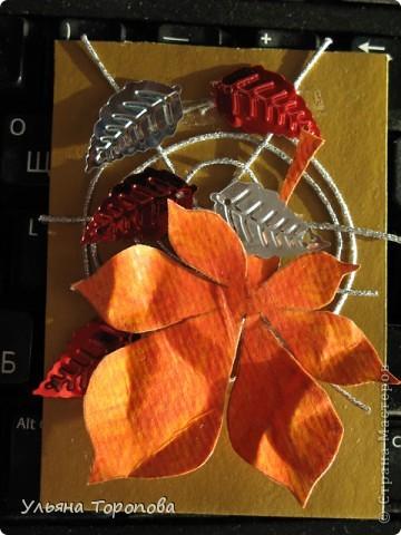 Осень - мое любимое время года, особенно ранняя, когда еще нет проливных дождей и много-много шуршащих листочков!))) bagira1965 и Valkiria выбирайте пожалуйста первые!!! А теперь давайте отгадывать листочки... фото 7