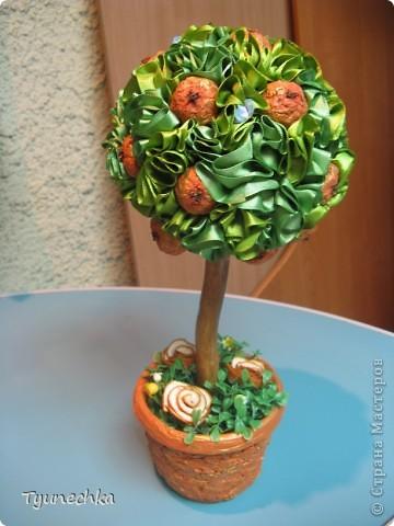 Вот такое вот мандариновое деревце получилось в подарок для любимой подруги. Огромное спасибо Свете-STRENFLEX за подробный МК по созданию подобного деревца и личные советы! фото 3