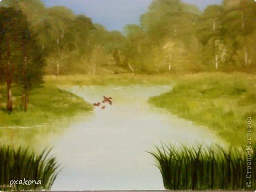 Это мой первый пейзаж, написанный маслом по уроку, найденному где-то в инете фото 3
