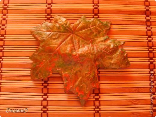 Кленовый листок фото 2