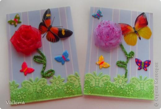 Яркие бабочки поселились на наших новых карточках Первой выбор за сестрой фото 2