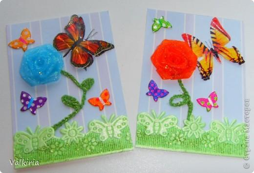 Яркие бабочки поселились на наших новых карточках Первой выбор за сестрой фото 4