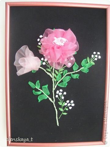 Букет роз. фото 10