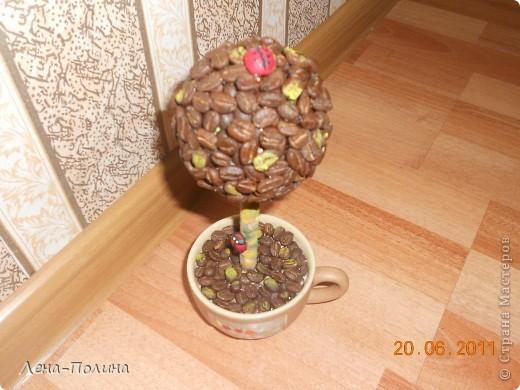 Вот такое деревце получилось у нас. Сделали его в подарок. Именниница сказала , что это не только красиво, а еще и сеанс ароматерапии. фото 2