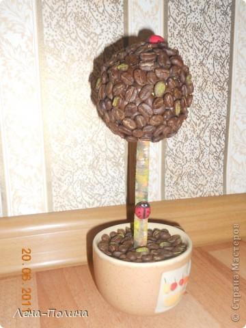 Вот такое деревце получилось у нас. Сделали его в подарок. Именниница сказала , что это не только красиво, а еще и сеанс ароматерапии. фото 1