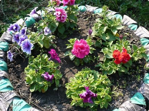Вот такая Хозяйка сада хозяйничает теперь у нас в саду. Она очень ответственная и хозяйственная. Думаю с ее помощью и цветы будут лучше цвести и овощей будет больше, да и фрукты не пропадут. За всем она присмотрит и все проконтролирует. Вон она какя важная! фото 6