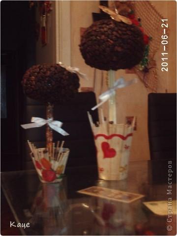 Кофейный сад фото 3
