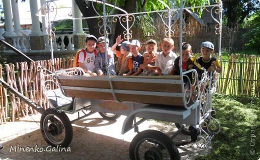 """В соседнем греческом посёлке Сартана второй год по инициативе местных предпринимателей находится замечательное место для отдыха родителей с детьми """"Деревня у Вашуры"""", или Сартанский зоопарк. Сюда мы с удовольствием приезжаем с учениками. Такие деревянные охранники встречают нас при входе. фото 35"""