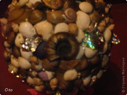 этот кактус из ракушек я сделала родителям на новоселие! фото 4