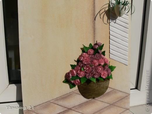 Хризантемы (КЛЕВЕР) фото 4