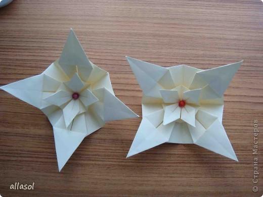 Здравствуйте! Хочу поделиться с вами результатами своих экспериментов с цветочками. Пока только идеи. фото 21