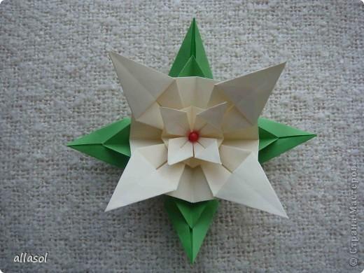 Здравствуйте! Хочу поделиться с вами результатами своих экспериментов с цветочками. Пока только идеи. фото 22