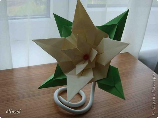 Здравствуйте! Хочу поделиться с вами результатами своих экспериментов с цветочками. Пока только идеи. фото 23