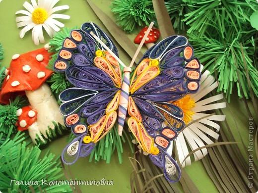 """Добрый день,  жители СТРАНЫ МАСТЕРОВ.  На сей раз - новый альбом """"БАБОЧКИ"""". Предлагаю вам два варианта фотоснимков каждой бабочки. фото 3"""