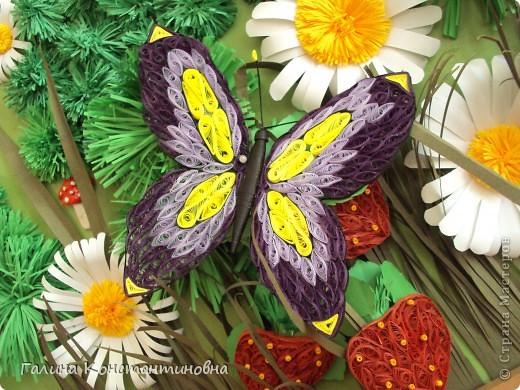 """Добрый день,  жители СТРАНЫ МАСТЕРОВ.  На сей раз - новый альбом """"БАБОЧКИ"""". Предлагаю вам два варианта фотоснимков каждой бабочки. фото 19"""