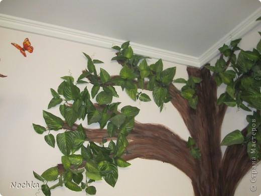 """Вот такое деревце """"растёт"""" в комнате рабочего общежития. Впервые подобное дерево я создавала для мамы, делала """"семейное древо"""" на ветвях красовались рамочки с фотографиями нашей семьи, распологалось оно по центру стены, в отличии от этого и ствол делала из кусочков ткани затем покрывала лаком, смотрится более естественно чем в нарисованном варианте. Это деревце тоже смотрится очень интересно и весьма оживляет комнату, навевает летнее настроение, даже в суровые морозы! фото 8"""