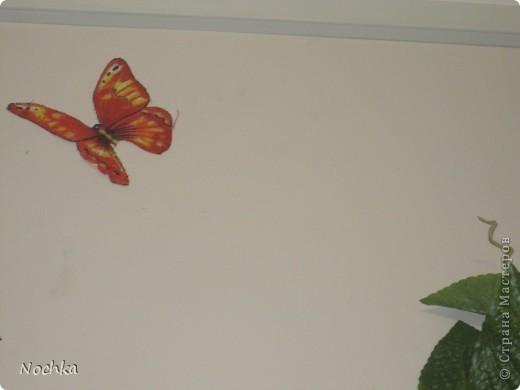 """Вот такое деревце """"растёт"""" в комнате рабочего общежития. Впервые подобное дерево я создавала для мамы, делала """"семейное древо"""" на ветвях красовались рамочки с фотографиями нашей семьи, распологалось оно по центру стены, в отличии от этого и ствол делала из кусочков ткани затем покрывала лаком, смотрится более естественно чем в нарисованном варианте. Это деревце тоже смотрится очень интересно и весьма оживляет комнату, навевает летнее настроение, даже в суровые морозы! фото 9"""