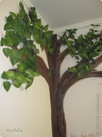 """Вот такое деревце """"растёт"""" в комнате рабочего общежития. Впервые подобное дерево я создавала для мамы, делала """"семейное древо"""" на ветвях красовались рамочки с фотографиями нашей семьи, распологалось оно по центру стены, в отличии от этого и ствол делала из кусочков ткани затем покрывала лаком, смотрится более естественно чем в нарисованном варианте. Это деревце тоже смотрится очень интересно и весьма оживляет комнату, навевает летнее настроение, даже в суровые морозы! фото 10"""