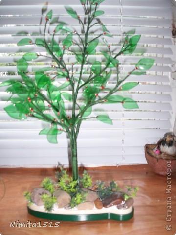 Дерево из пластиковой бутылки и бисера фото 8